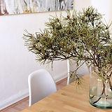 table-4180630__480 - עותק.jpg