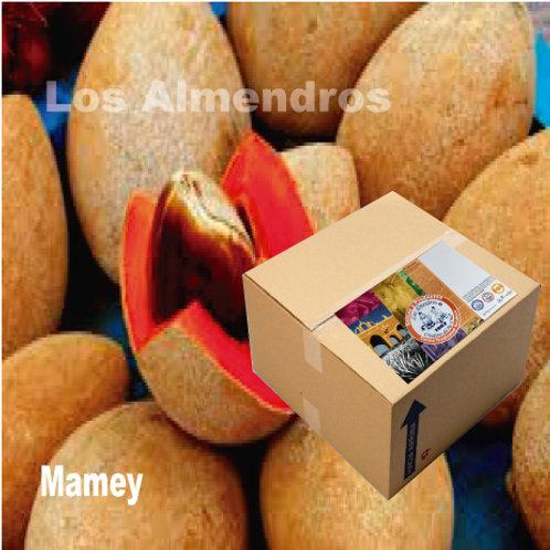 Mamey Yucateco 10kg