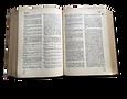 diccionario-01.png
