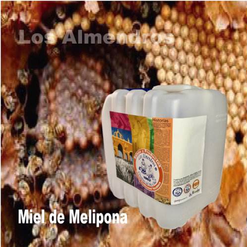 Miel Artesanal de Melipona