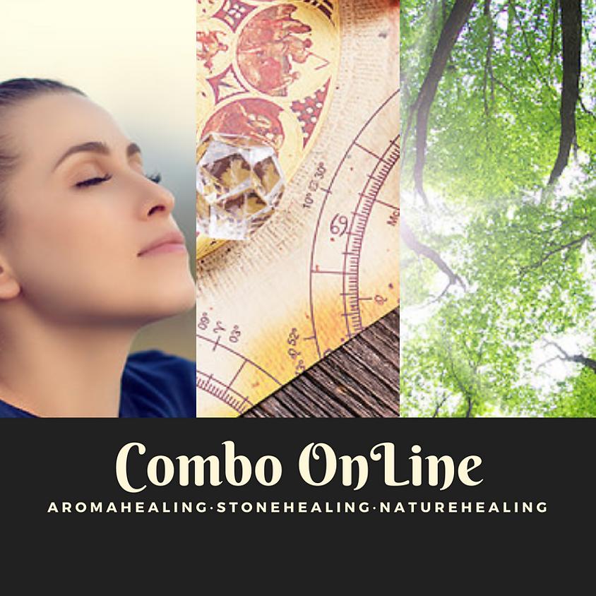 COMBO 3 CURSOS Online
