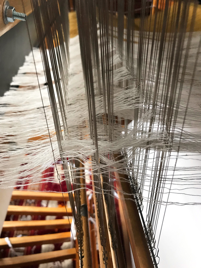 Organic cotton warp threads, undyed and dyed with osage and marigold, heddles threaded