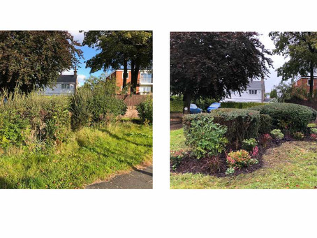 Whaley Lane/Pensby Road Flower Beds
