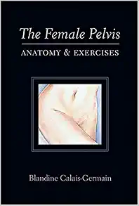 """""""The Female Pelvis"""""""