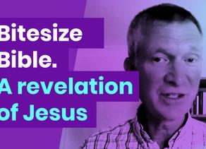 Thursday 11 – Revelation 22:8-9
