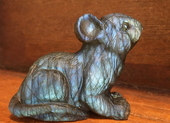 Labradorite Mouse