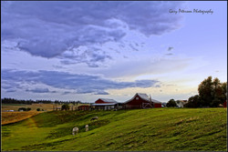 097-1-tuesday evening on peone road .jpg