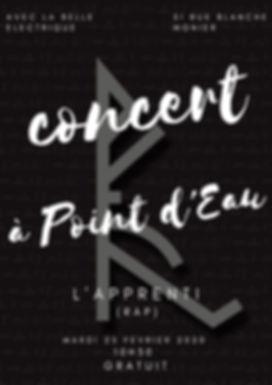 Concert a point d'eau.jpg
