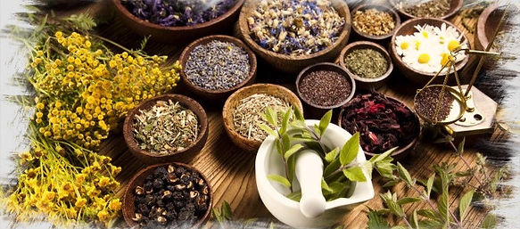 herbs_Fotor_edited_edited.jpg