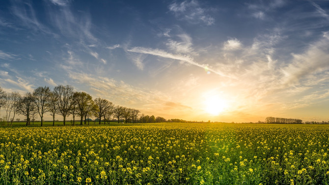 March 2018: Spring Equinox