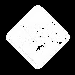 NIGHTSKATING.png