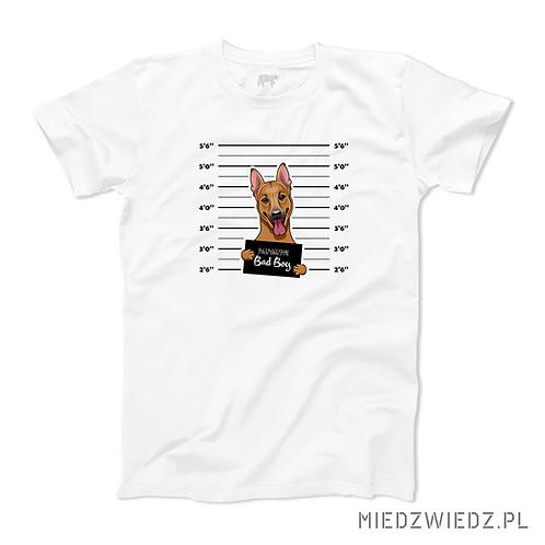 koszulka - OWCZAREK - BAD BOY