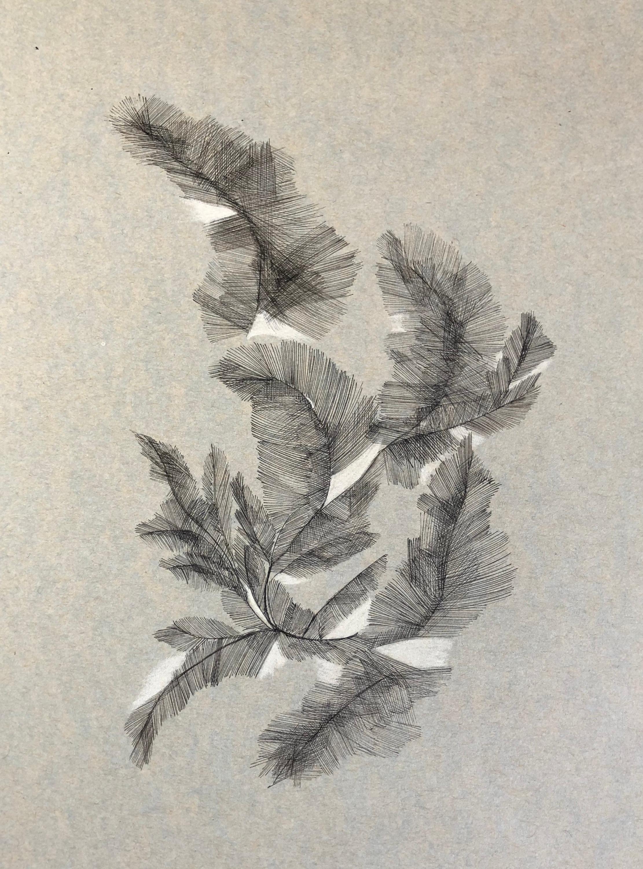A4 encre noire crayon crème papier vert