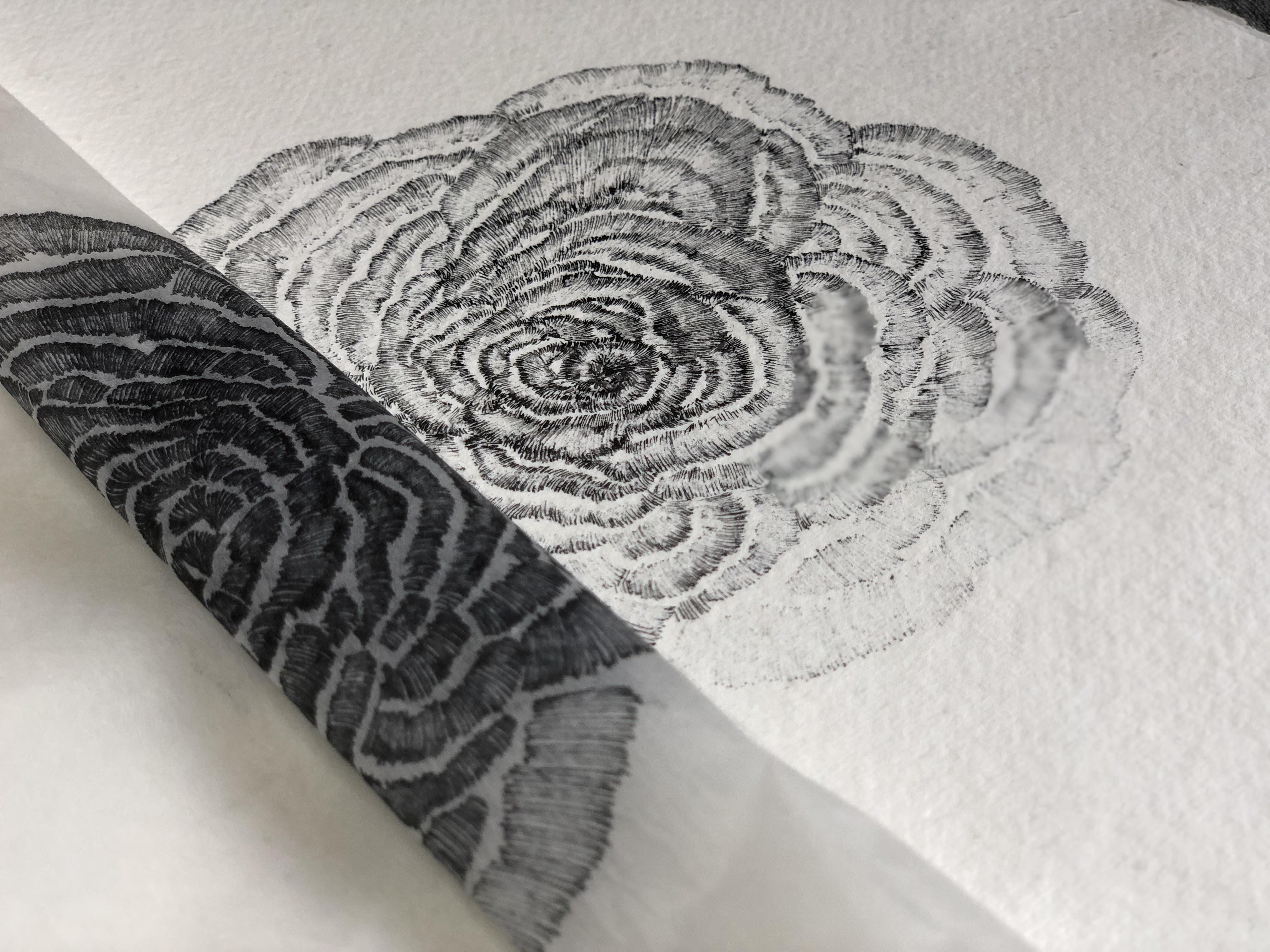 A3 encre blanche papier blanc