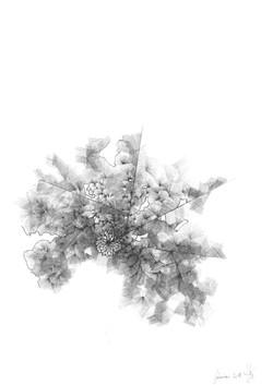 A4 encre noire papier blanc