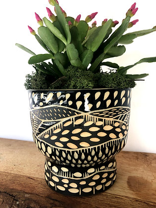 Night & Day Planter #3