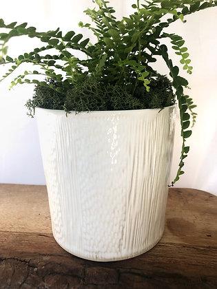 White Gloss Planter