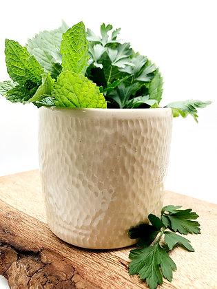 Fresh Herb Vase #2