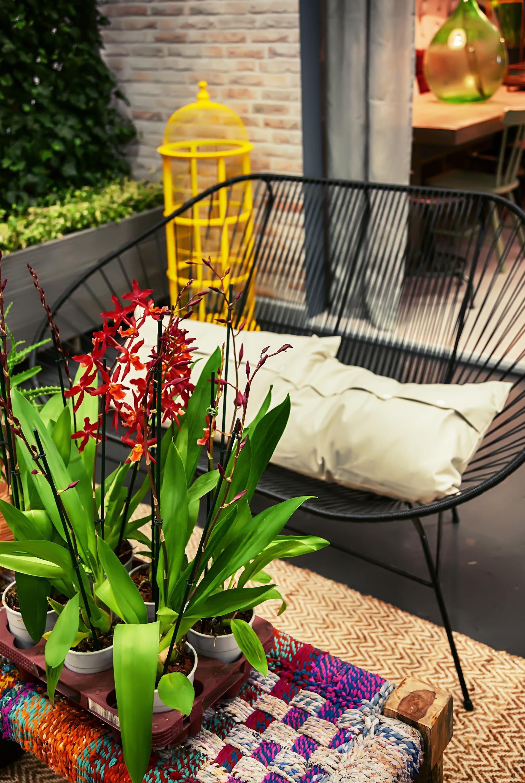 Comfort Techniques, Porch-Visit