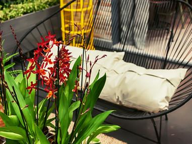 Terça de Projeto | Jardim em pequenos espaços