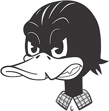 pato png.png