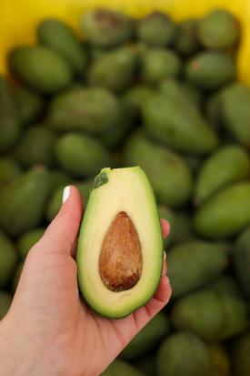 Fuerte avocado cut
