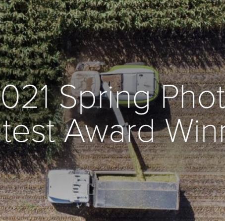 2021 Spring Photo Contest Award Winners