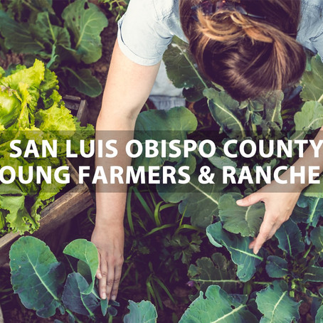 San Luis Obispo County Young Farmers and Ranchers: Beginning Again