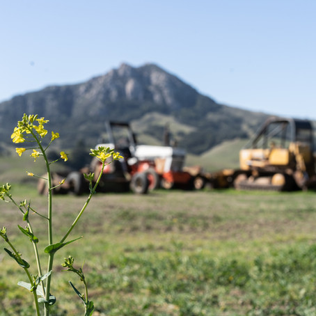 How one Cal Poly professor is improving automation within agriculture