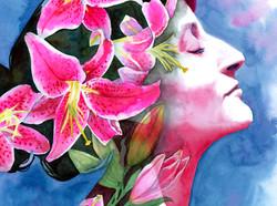 Blooming Stargazer Lillies