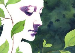 Magnolia (detail)