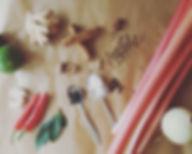 rhubarb website_edited.jpg