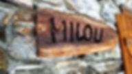 Milou_edited.jpg