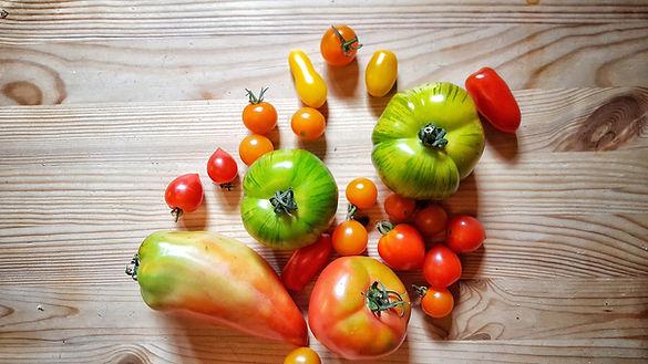 summer tomato.jpeg