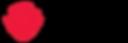 HcoHairNails-logo-Wide_long copy.png