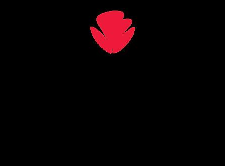 HcoEsthetics-logo-04.png
