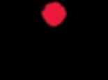 HcoHairNails-logo-04.png