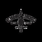 logo_SQ_countryarcher.png