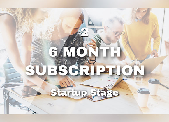 6 MONTH SUBSCRIPTION Startup Stage