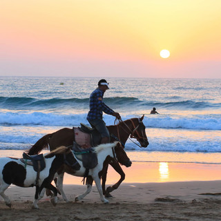 Maroco-IruteFaustina-2018.09-x-100.jpg