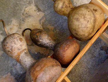 Cured Gourds.jpg