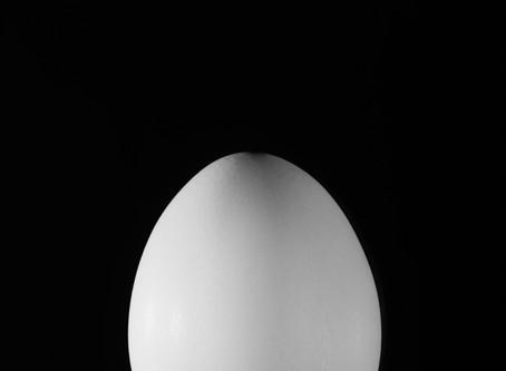 에덴동산과 아담이 받은 저주의 실체? - 온라인 전시 프로젝트 1번 On-line Exhibition Project No. 1, 다면체탐구 - '진짜달걀'