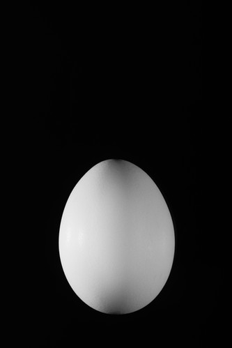A Real Egg