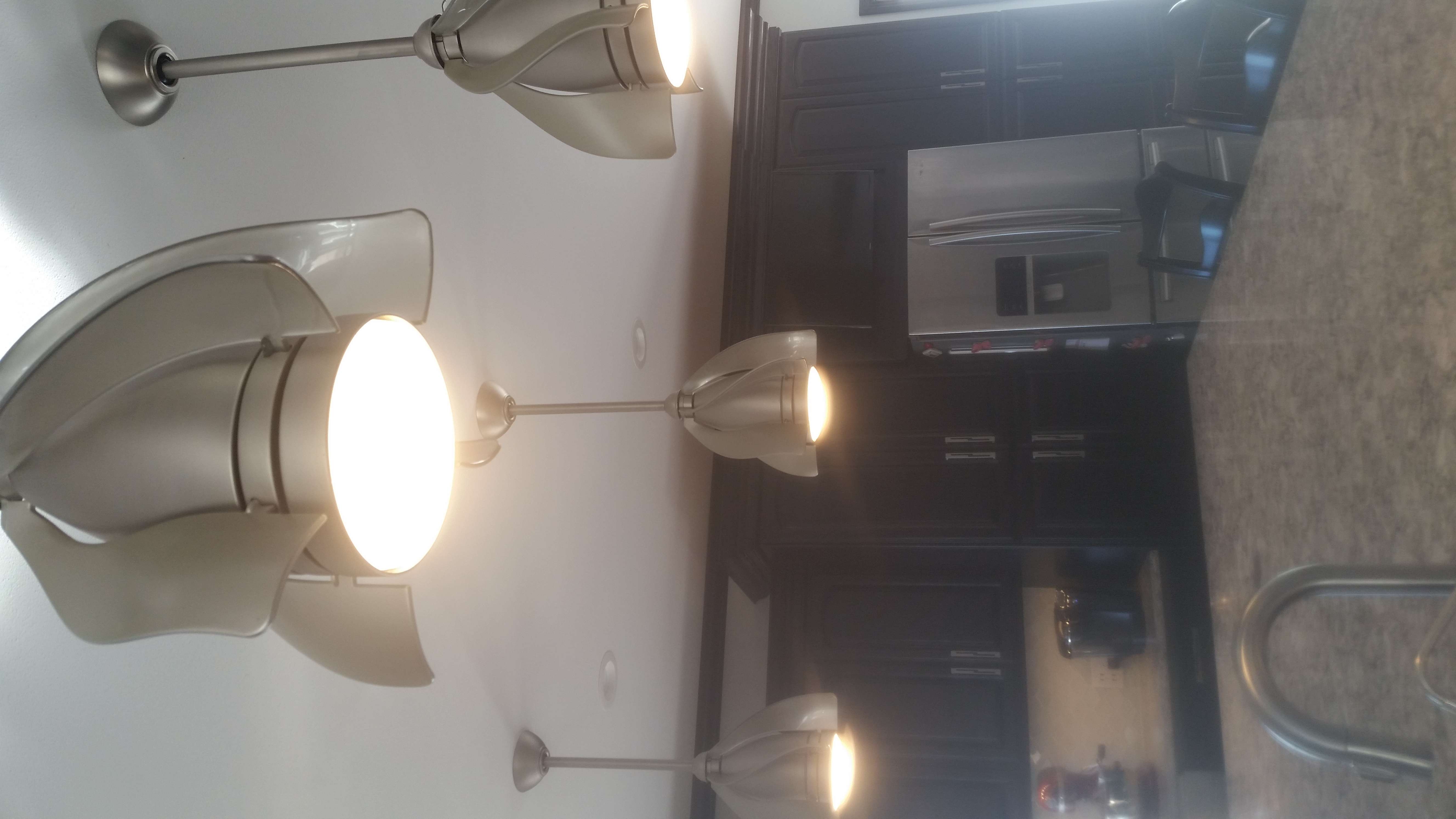 Pendant fan lights