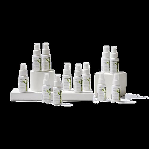 12 Bottles 60ml Antibacterial Spray