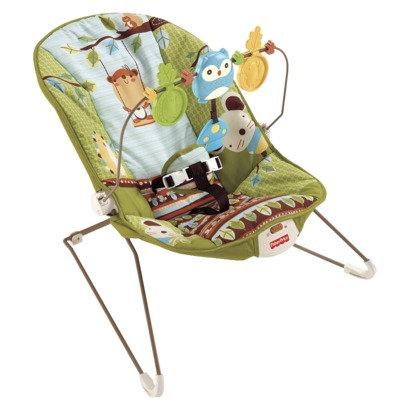 fisher price baby's bouncer