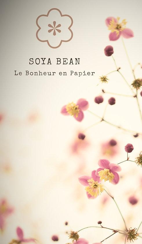 Soya Bean Origami 1_edited_edited_edited.jpg