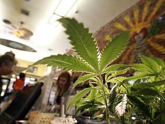 California Finally Reaches Agreement on Medical Marijuana Rules