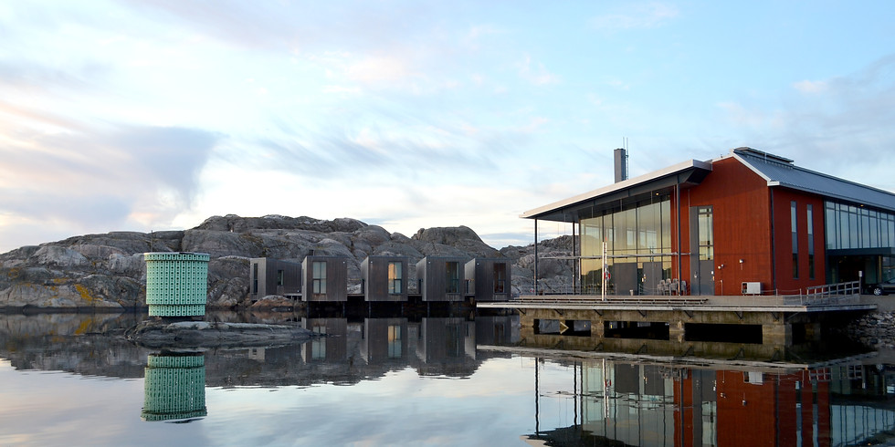 Gunnebo House & The island Tjörn - ONLY FOR iConference 2020 participants!