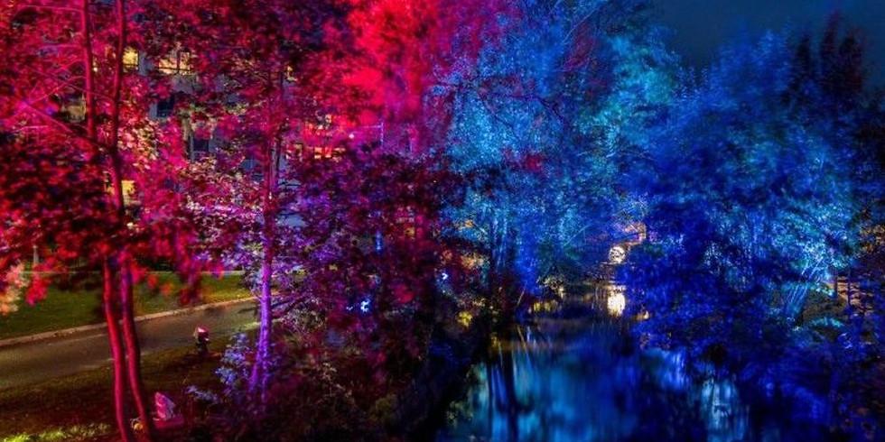 Lights in Alingsås - ett världsunikt ljusevenemang / a world unique lighting design event